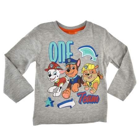 Bluzka dla dzieci z pieskami z bajki Psi Patrol szara